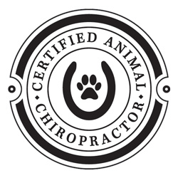 Certified Animal Chiropractor in Niwot CO